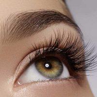 Tolure Hairplus pestañas y cejas